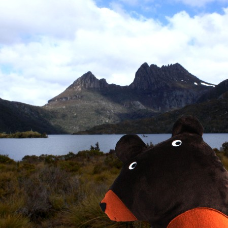 happybearatcradlemountain